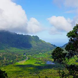 Nuuanu Valley Oahu Hawaii by Kevin Smith