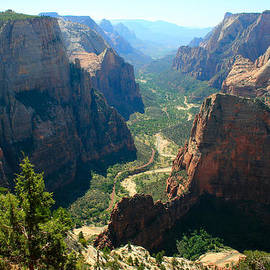 Marty Fancy - Observation Point at Zion