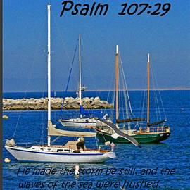 Joseph Coulombe - Ocean birds -  Calm sea - Psalm 107-29