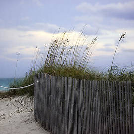 Ocean View 2 - Miami Beach, Florida by Madeline Ellis
