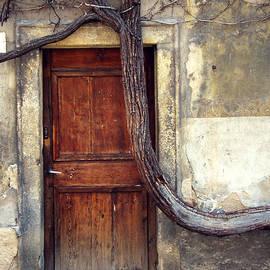 Rebecca Pickrel - Oh Bended Tree