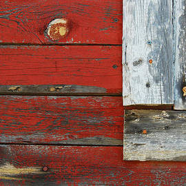 Old and Weathered by Tam Ryan
