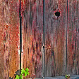 Old Barn Wood by Ann Horn