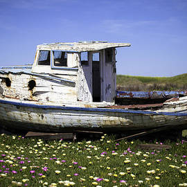 Jacob Portlock - Old Boat in Flowers