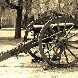 Old Cannon by Cynthia Guinn