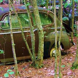 Chuck  Hicks - Old Car In The Woods