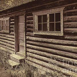Old Colorado Homestead by Janice Pariza