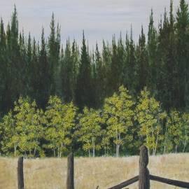 Old Fences by Dana Carroll