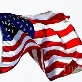 America The Beautiful Usa by Carol F Austin