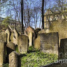 Brenda Kean - Old Jewish Cemetery