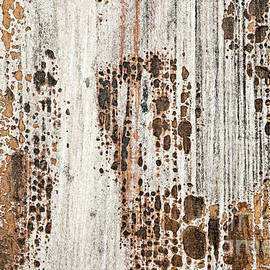Old painted wood abstract No.2 by Elena Elisseeva