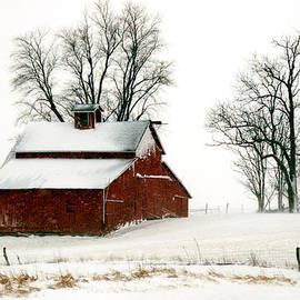 Kimberleigh Ladd - Old Red barn in an Illinois Snow Storm