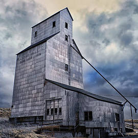 Old Silo by Cindy Archbell