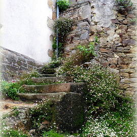 Carla Parris - Old Stone Steps