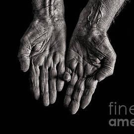 Doc BrahamOld Womans Hands - Begging Hands