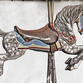On A Carousel by Marcia Colelli