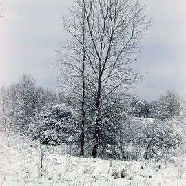 Kay Novy - On A Winters Day