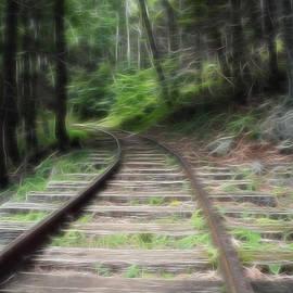 Doc Braham - Victorian Locomotive Tracks