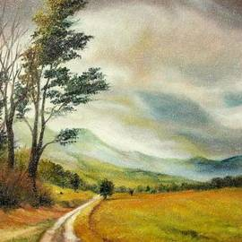 On the Road by Sorin Apostolescu