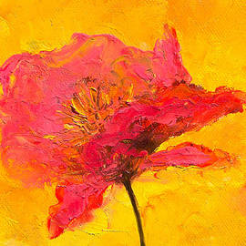 One Red Poppy by Jan Matson