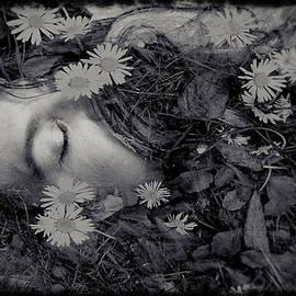 Susan Maxwell Schmidt - Ophelia
