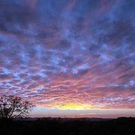 Tam Ryan - Oracle Sunset