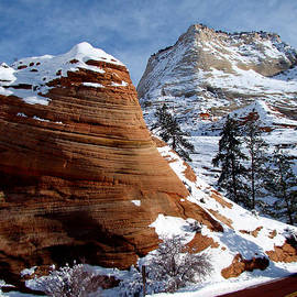 Qing Yang - Orange and White Rocks in Zion