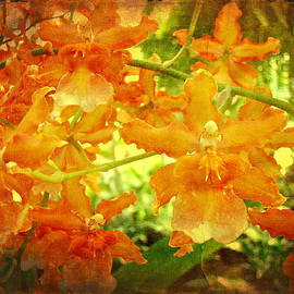 Mother Nature - Orange Orchid Tangle