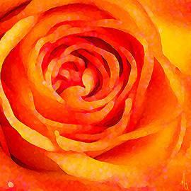 Michelle Rene Goodhew - Orange Rose