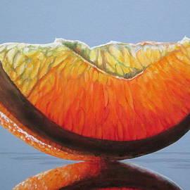 Orange Slice by Lillian  Bell