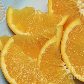Andee Design - Orange Slices 2