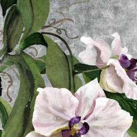 Mitzi Lai - Orchid A - phalaenopsis