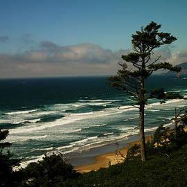 Oregon Coast by Jeff Swan