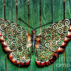 Ornamental Butterfly by Kaye Menner