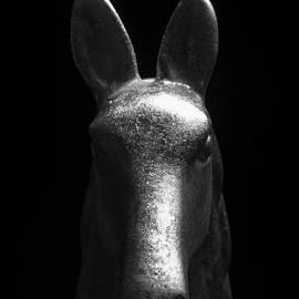 Don Hooper - Ornamental Horse