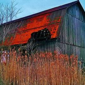 Daniel Thompson - Outside an Abandoned Barn 1