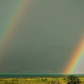 Carl Nielsen - Over the Rainbow