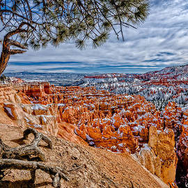 Overlooking The Hoodoos by Christopher Holmes