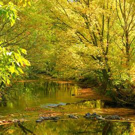 Steven Ainsworth - Owens Creek III