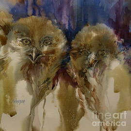 Donna Acheson-Juillet - Owls