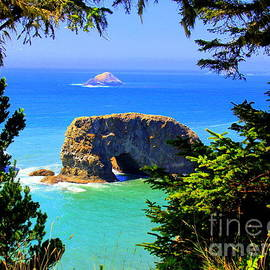 Arch Rock At Noon by Michele Hancock