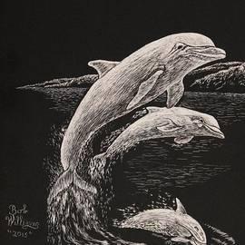 Pacific Ocean Acrobats  by Bob Williams