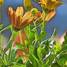 Debbie Portwood - Painted daisies photoart