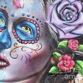 Steven Parker - Painted Lady