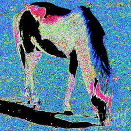 Painted Pony by Jerome Stumphauzer