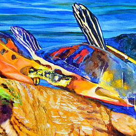 AnnaJo Vahle - Painted Turtles
