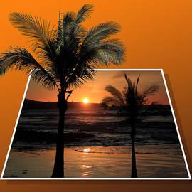 Shane Bechler - Palm Trees at Sunset