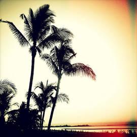 Chris Andruskiewicz - Palms at Dawn I Sunset