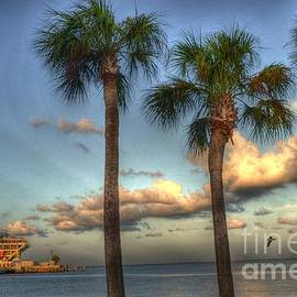 Palms at the Pier by Timothy Lowry