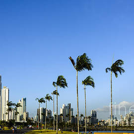 Panama City Skyline by Oscar Gutierrez